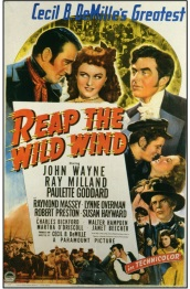 Reap The Wild Wind